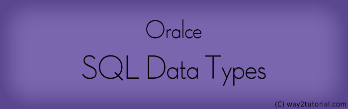 Oracle SQL Data Types